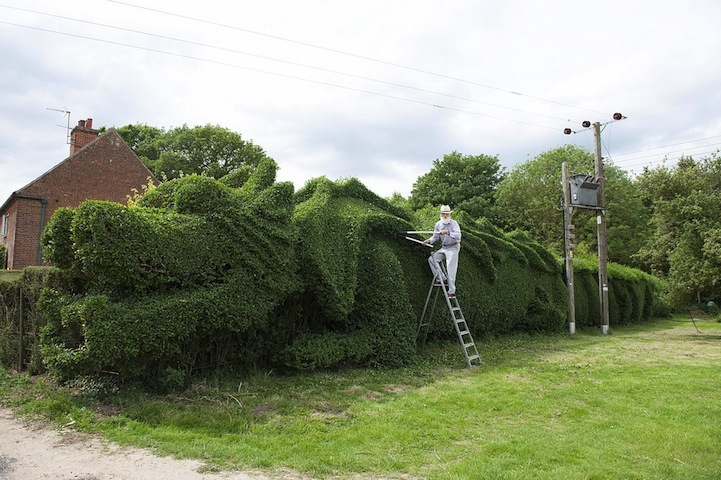 john-brooker-sculpted-hedge-dragon