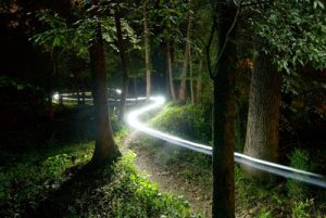 Conyers, GA - May 21: The streaks of a rider's headlamp make a winding trail through the woods during the Granny Gear 24 Hours of Conyers 24-hour mountain bike race in Conyers, Georgia.