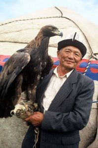 Golden eagle huntsman in Karakol, Kyrgyzstan
