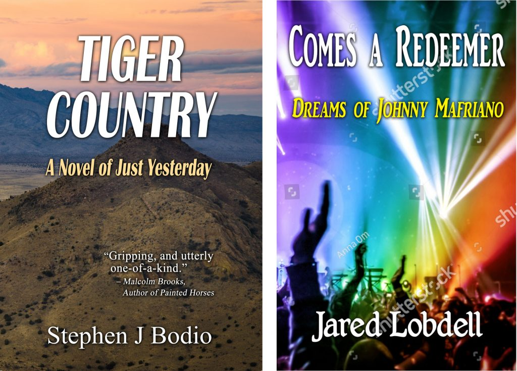 Image of 2 draft book covers