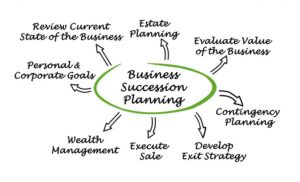 Image of steps for business succession planning